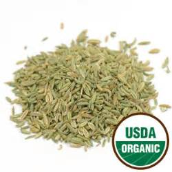 Detox From And Nicotine Diatomaceous Earth by Fennel Seed Organic