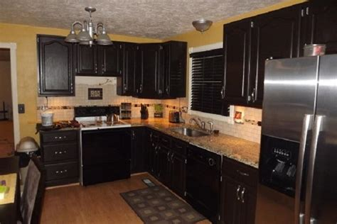 Cheap Black Kitchen Cabinets Bloombety Cheap Black Kitchen Cabinet Remodel Cheap Kitchen Remodel