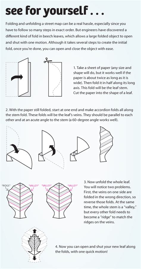 Origami History Facts - space age leaves answers in genesis