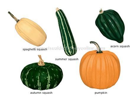 5 fruits and vegetables food kitchen food vegetables fruit vegetables