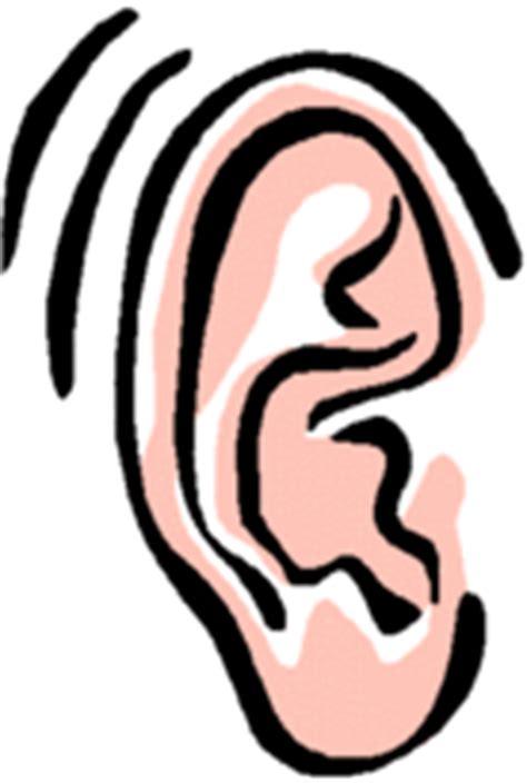 imagenes animadas orejas cienciasnaturaleem1 los 5 sentidos