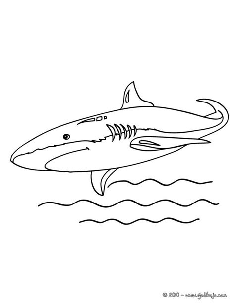 mako templates mako shark coloring pages