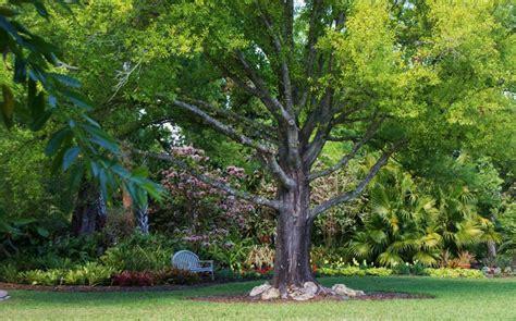 Heathcote Botanical Gardens by Heathcote Botanical Gardens