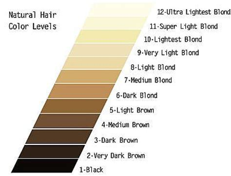 hair color scale confessions of a makeup fiend understanding hair color