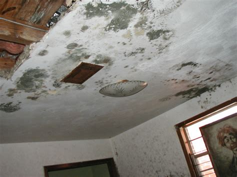 How To Repair Popcorn Textured Ceiling After Water Damage How To Fix A In Ceiling