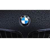 BMW Logo Black Background HD Backgrounds  Galleryautomo