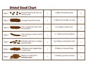 Bristol stool chart youtube