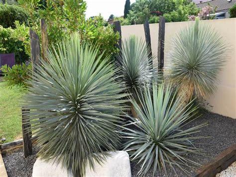 Exceptionnel photos amenagement jardin paysager #1: paysagiste-herault-jardin-japonais.jpg?x40675