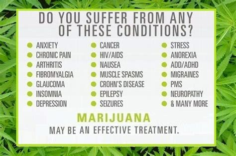 cannabis guide disease treatments using cannabis marijuana hemp extracts books will retirees in florida embrace the new marijuana