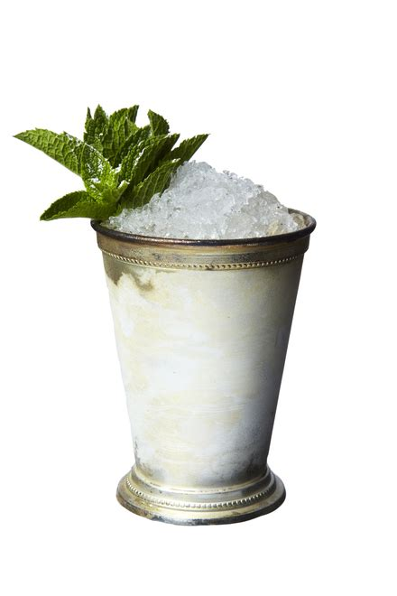 mint julep cocktail mint julep cocktail