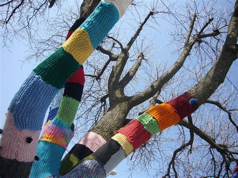knitting tree yarn bombing