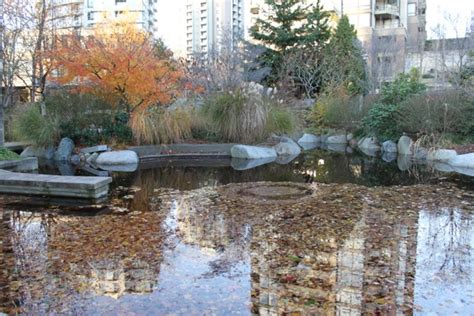 late fall in vancouver weekend photos links