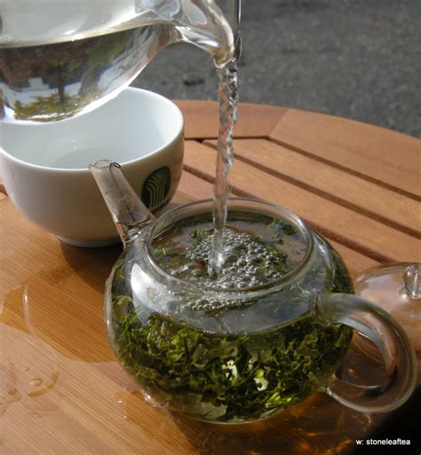 6 how to brew leaf green tea in plants biological - Brewing Green Tea Leaves