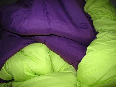 lime green and purple bedroom lime green purple reversible college comforter xl