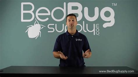 Bed Bug Bombs Do They Work by Why Bug Bombs Do Not Work Against Bed Bugs