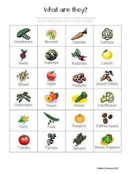 Edible Parts Of Plants Worksheets
