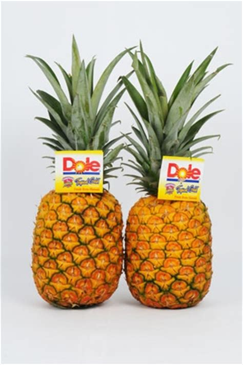1 Case of 6 Royal Hawaiian® Tropical Gold Pineapples®   Dole Fruit Hawaii