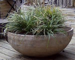 ornamental grasses in wooden planter jpg from sustain