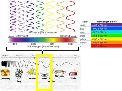 what color has the wavelength which colour in the visible light spectrum has the least