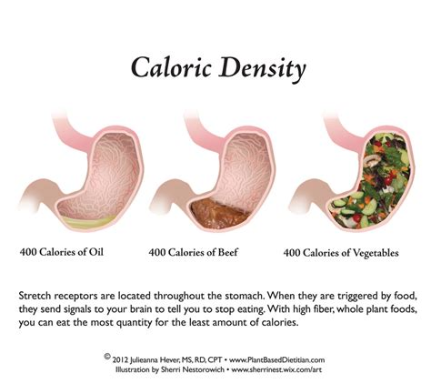 80g carbohydrates low carb diet chart diet plan