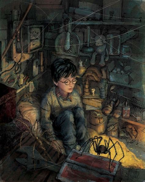 libro the bubble boy harry potter pottermore