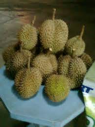 durians facts  health benefits