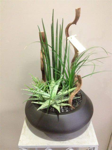 plantes dinterieur dexception vatry fleuristecom
