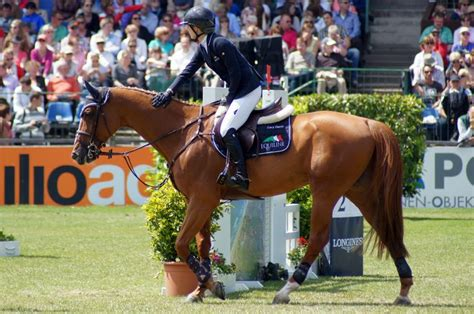 lucy davis horse rider 210 best equiline images on pinterest equestrian
