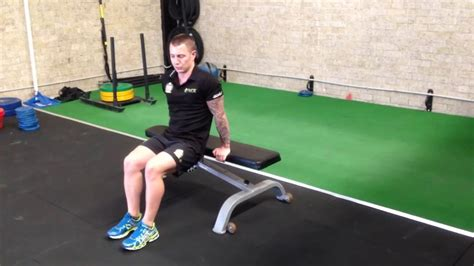 triceps bench dip triceps bench dips pure fitness