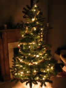 Christmas Tree - file christmas tree at night jpg