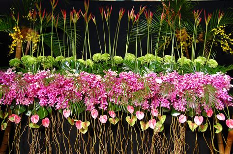 International Flower And Garden Show File 2013 Melbourne International Flower And Garden Show 8585115618 Jpg Wikimedia Commons