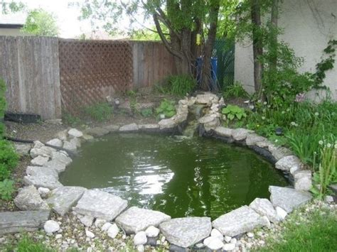 backyard ponds do it yourself for the home