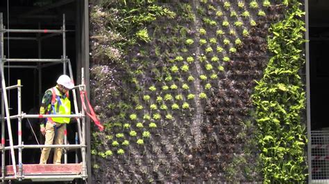 blanc talks about vertical gardens at one central