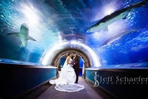 Boston Wedding Venues Saint Marys Cathedral Basilica Assumption Covington Wedding Newport Aquarium Photographs Jason