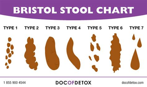 Blood In Stool While Detoxing by Scoop On What Your Says About You Doc Of Detox