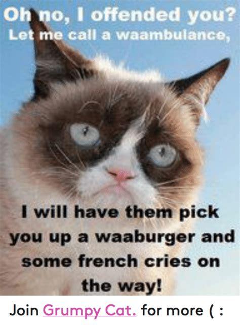 grumpy cat joins cats on 25 best memes about liar liar memes
