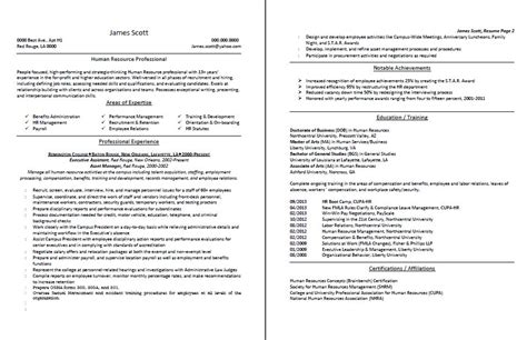 professional resume and cv sles