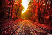 Beautiful Autumn Desktop Wallpaper  HD Wallpapers