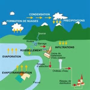 d ou vient l eau le cycle de l eau la nature marine