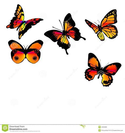 Farfalle Clipart Farfalle Arancioni Illustrazione Di Stock Illustrazione