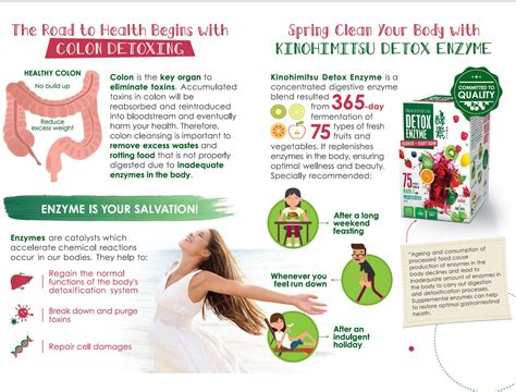 Bodytox Detox Foot Patches Health by Detox Enzyme 30 S 30 S Kinohimitsu Singapore