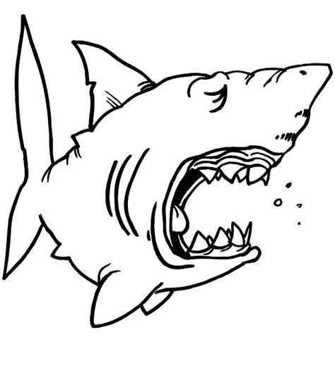 coloring sharks jaw coloring pages