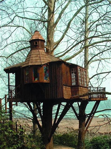 really cool tree houses mix stuffz some more crazy cool and very unusual