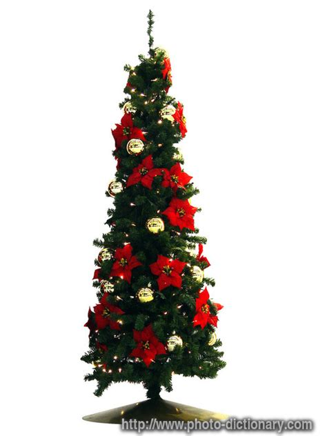 christmas tree photo picture definition at photo