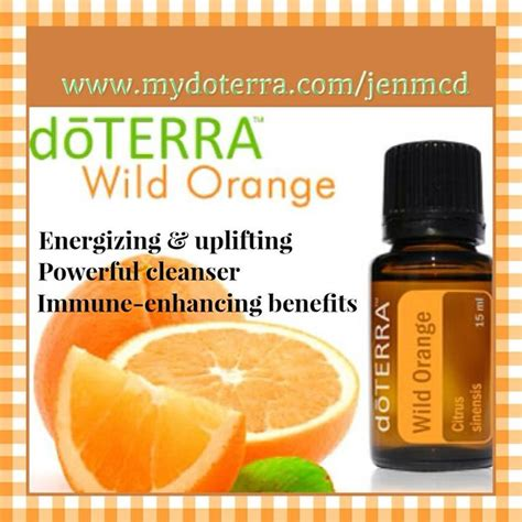 Doterra Oregano Detox by 77 Best Images About Doterra Essential Oils On