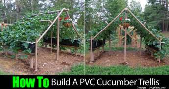 How To Build An Arbor Trellis How To Build A Pvc Cucumber Trellis