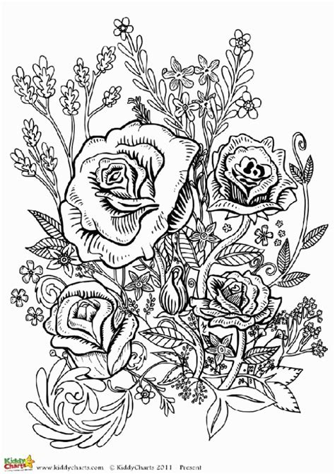 cool flower coloring pages for adults cool flower coloring pages for adults coloring home