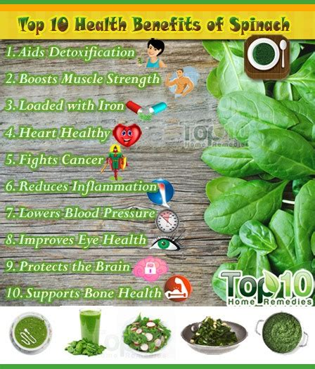 Spinach Detox Benefits by Top 10 Health Benefits Of Spinach Top 10 Home Remedies