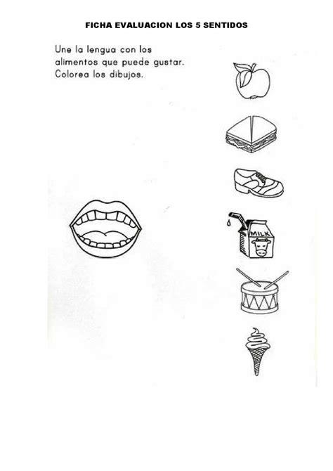 imagenes visuales gustativas lujo imagenes para colorear de los cinco sentidos del