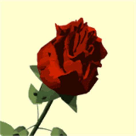 imagenes de flores gif gifs animados de flores gif de flor imagenes animadas de